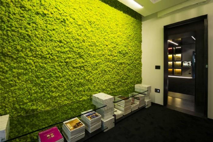Piante per parete verticale idea creativa della casa e - Giardino verticale in casa ...